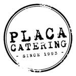 placa_logo_novi